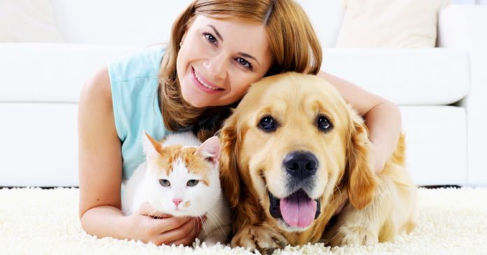 How pet sitters take care of pets friendly